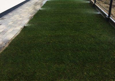 Nawadnianie trawnika w Ogrodzie Opole